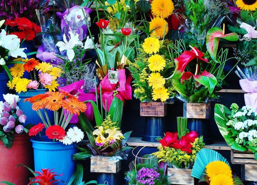"""אכיפת קורונה: עסקי מכירת פרחים בבנימינה וזכרון יעקב נקנסו ב-10 אלף ש""""ח, עסק לרהיטים נקנס ב-5,000 שקלים"""